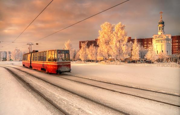Picture winter, Saint Petersburg, tram, January