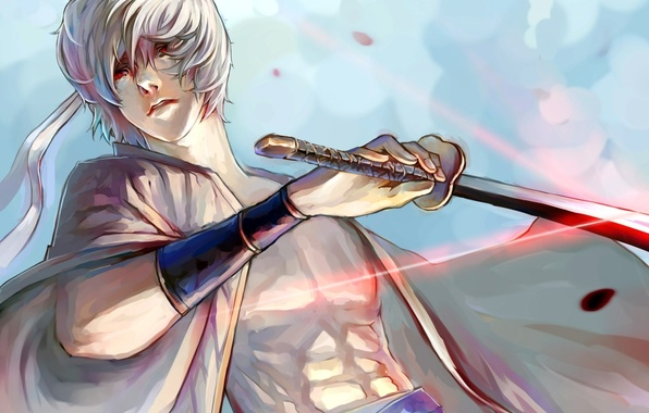 Picture weapons, katana, anime, petals, art, guy, gintama, sakata gintoki, shiroyasha, shimo