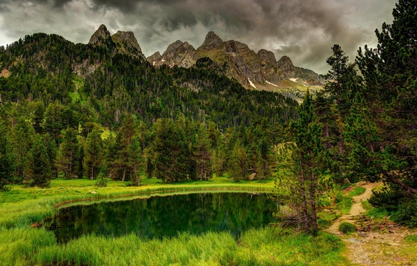 Picture forest, the sky, water, clouds, trees, mountains, nature, Park, river, forest, river, sky, trees, landscape, …