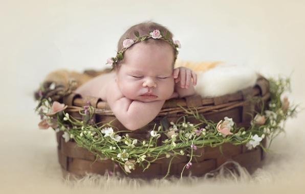 Picture basket, sleep, girl, wreath, baby