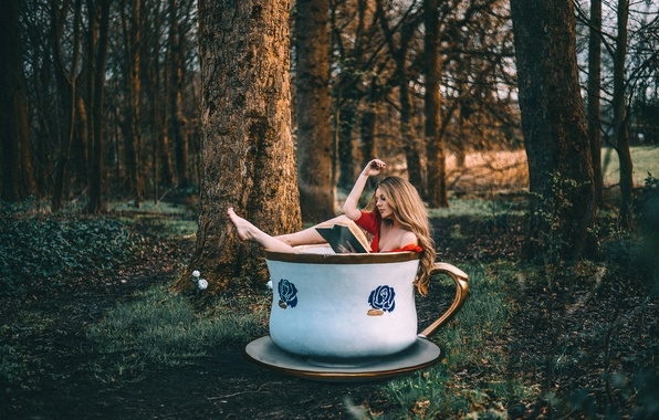 Picture forest, girl, Cup, book, Rosie Hardy