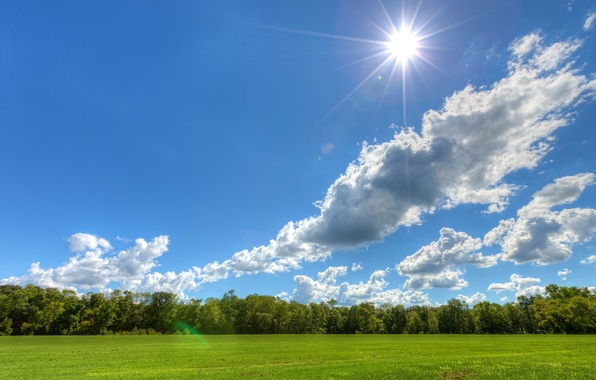 Picture the sky, clouds, trees, meadow, Sunny day, the sun