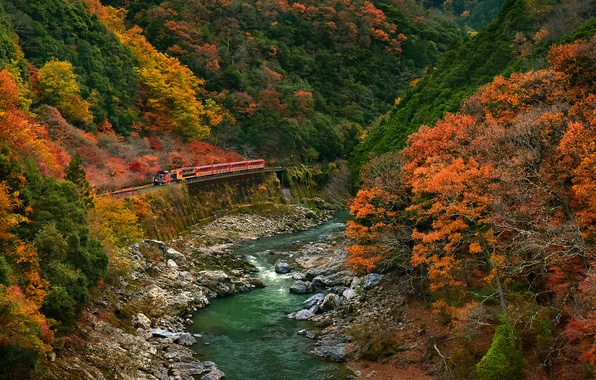 Picture road, autumn, forest, trees, mountains, river, stones, train
