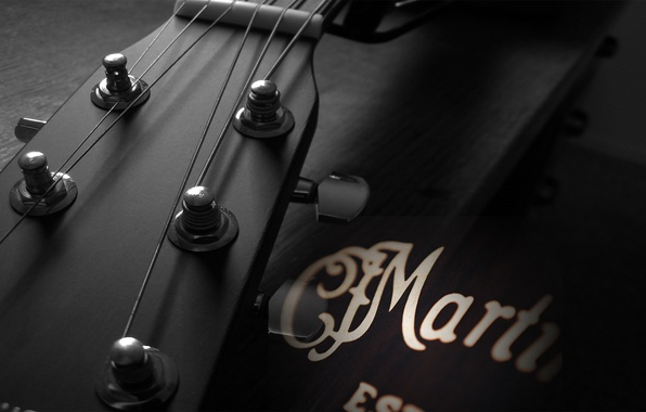 Picture macro, music, guitar, strings, tool, Grif, sound