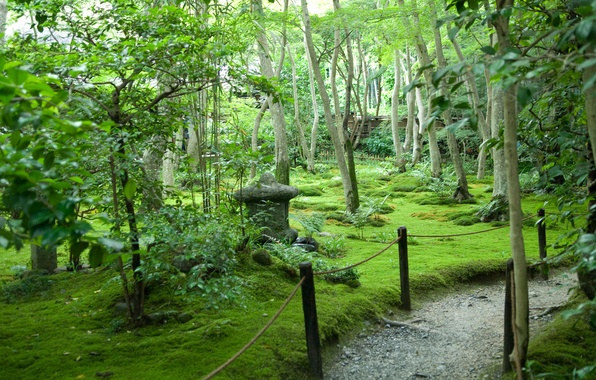 Picture summer, trees, Japan, garden, path