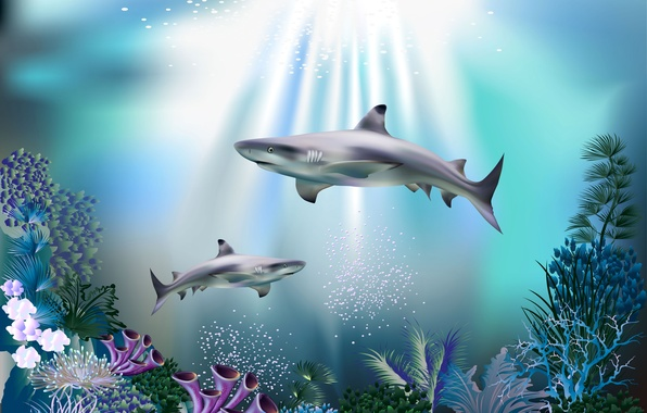 Picture sea, bubbles, blue, corals, sharks, underwater world, under water, rays of light, 3D