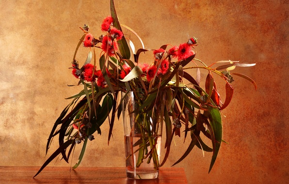 Picture glass, leaves, water, flowers, branches, table, vase, eucalyptus