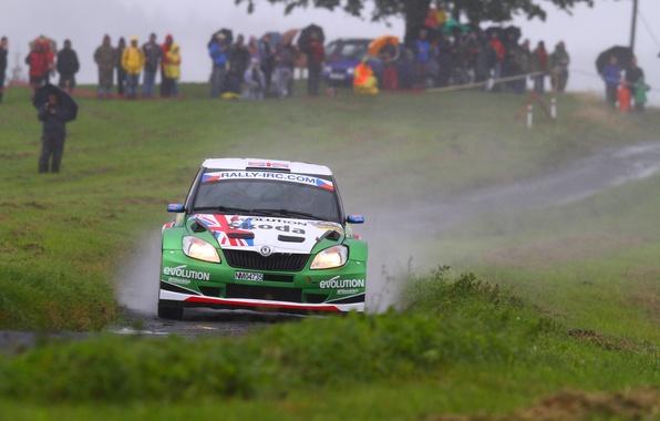 Picture People, Rain, Race, Rally, Fans, Overcast, Skoda, Fabia, Skoda