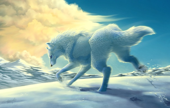 Picture winter, white, clouds, snow, mountains, movement, wolf, art, running, transparentghost