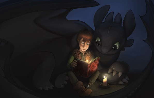 Picture Hiccup, Toothless, How to train your dragon, book., the night fury