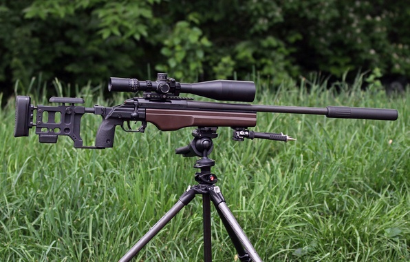 Picture forest, grass, sight, rifle, sniper, TRG‑22, Sako