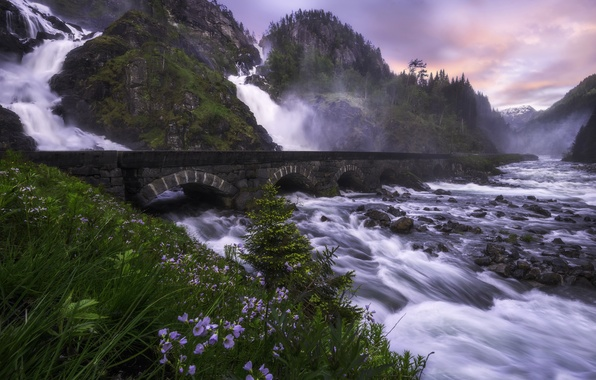 Picture flowers, mountains, bridge, river, stones, rocks, waterfall, Norway, cascade, Norway, Odda, Give, Latefoss, Latefossen