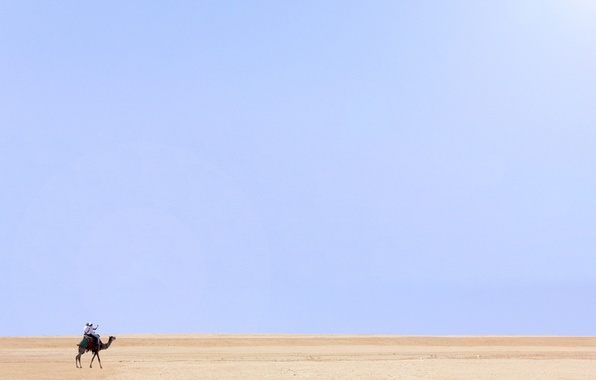 Picture people, desert, camel