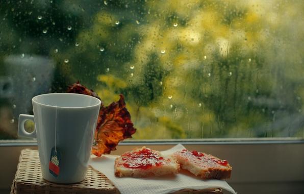 Picture rain, tea, window, mug, Cup, jam, bag