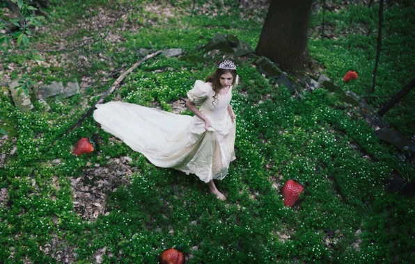 Picture forest, berries, dress, strawberry, girl, Diadema