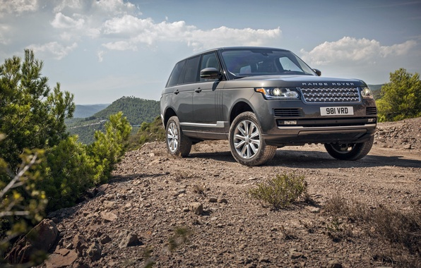 Picture Land Rover, Range Rover, land Rover, range Rover