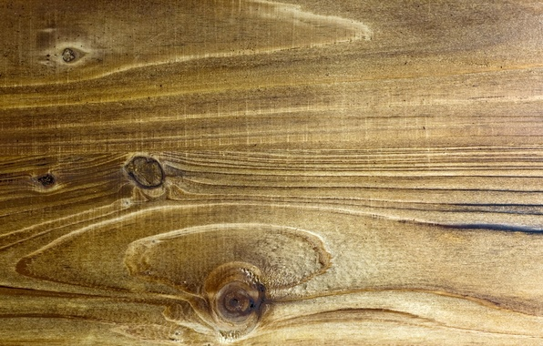 Picture background, Texture, Wood Panel