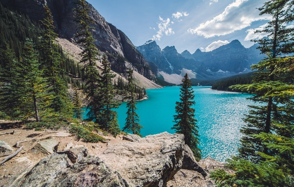 Picture forest, mountains, lake, Canada, Canada, Moraine Lake, Banff
