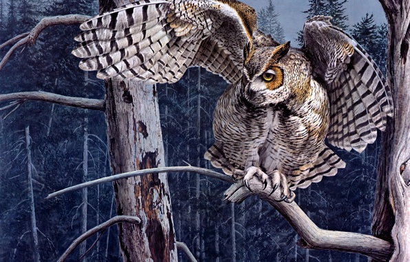 Picture forest, tree, owl, branch, art, owl, Guy Coheleach