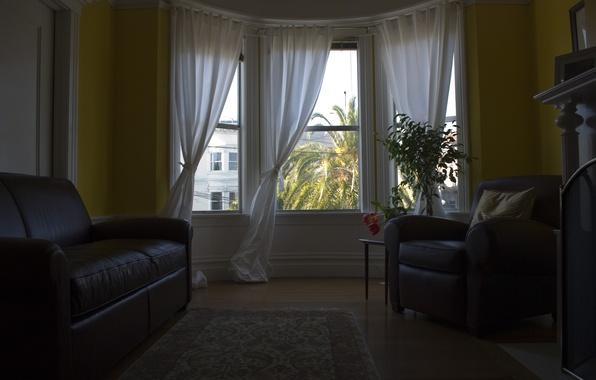 Picture design, beauty, interior