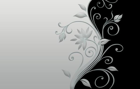 Picture minimal, black, flower, grey, blossom