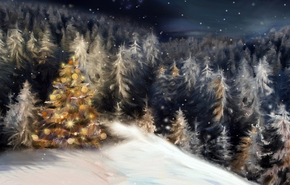 Picture winter, forest, snow, night, holiday, tree, tree, new year, Christmas