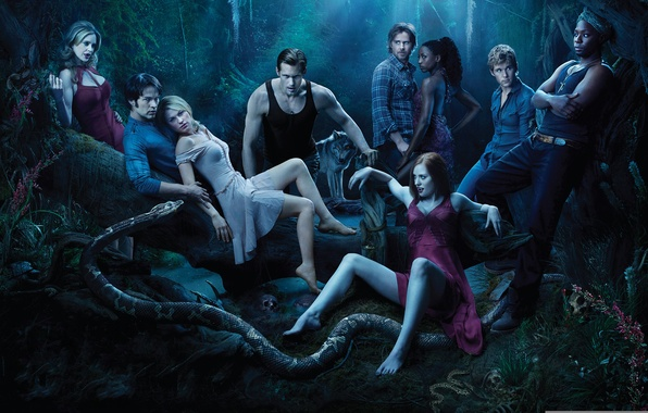 Picture night, people, wolf, snake, vampires, real blood