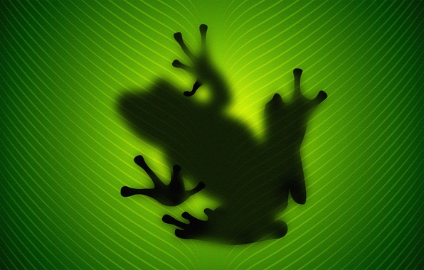 Picture sheet, green, Frog