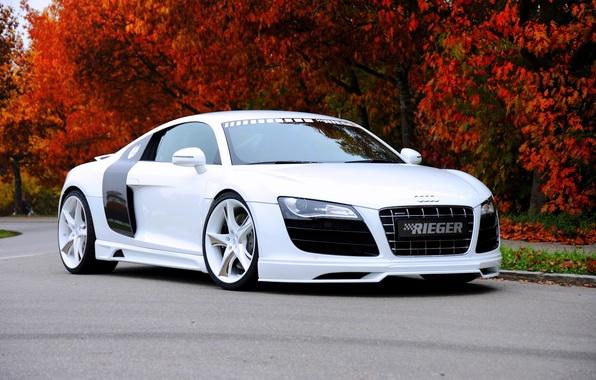 Picture Audi, Audi, supercar, 2010, Rieger