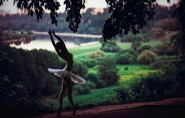 Picture forest, nature, river, dance, ballerina