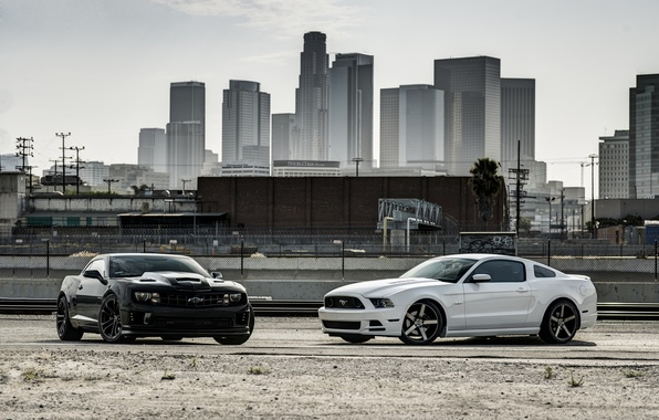 Picture white, the city, black, mustang, Mustang, ford, Chevrolet, Ford, chevrolet, camaro ss, Camaro