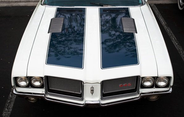 Picture retro, the hood, muscle car, classic, Oldsmobile 442