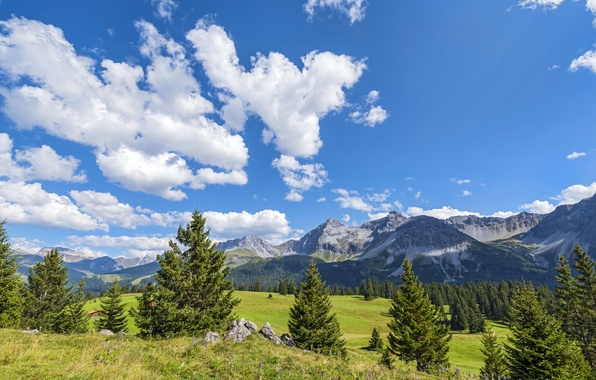 Picture forest, the sky, grass, the sun, clouds, trees, mountains, stones, field, Switzerland, meadows, Davos, Jakobshorn