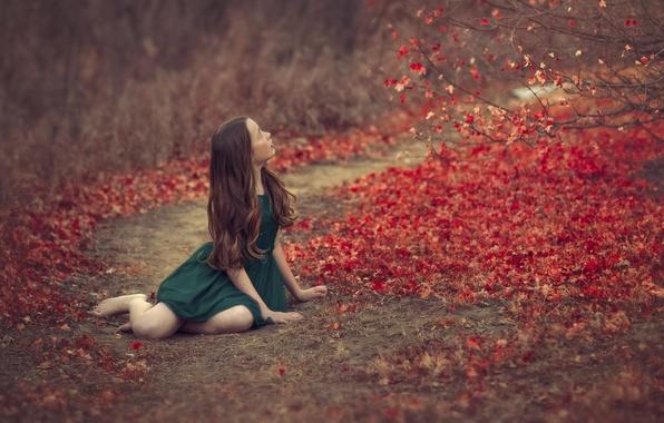 Picture autumn, leaves, girl, bokeh, green dress
