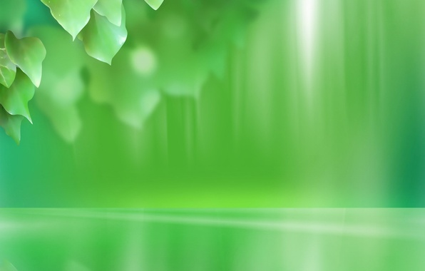 Picture leaves, green, minimalism