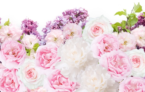 Picture flowers, roses, lilac, peonies