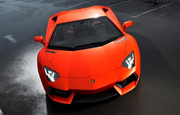 Picture Lamborghini, Orange, The hood, LP700-4, Aventador, Sports car, Poisonous