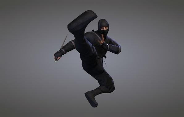 Picture weapons, sword, ninja, blade, ninja, black suit