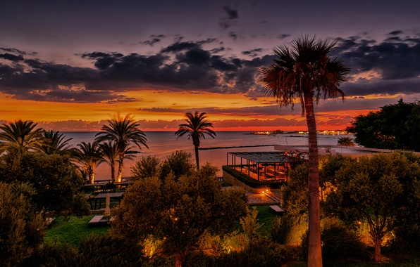 Picture sea, the sky, clouds, trees, sunset, lights, tropics, palm trees, coast, the evening, horizon, resort, ...