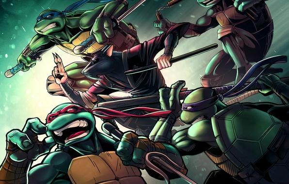 Picture turtle, rat, tmnt, mutant, Raphael, Leonardo, Donatello, Splinter, Teenage Mutant Ninja Turtles, Michelangelo