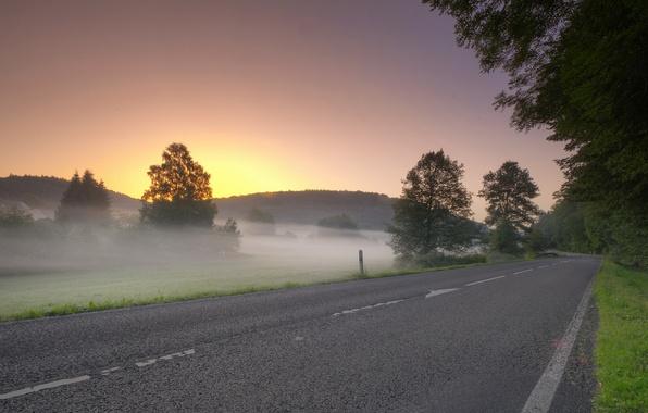 Picture road, field, landscape, sunset, fog