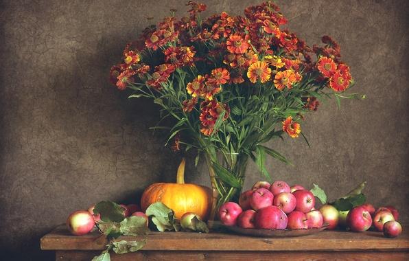 Picture autumn, flowers, apples, pumpkin, still life