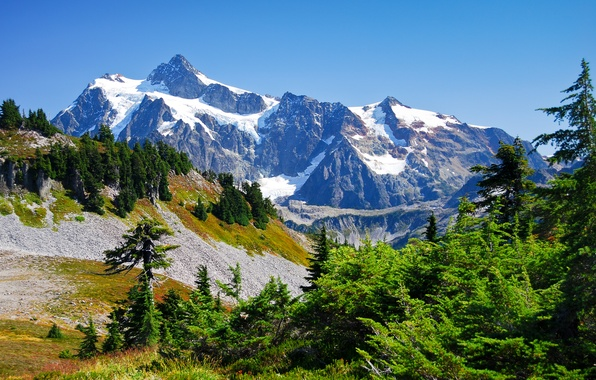 Picture the sky, snow, trees, mountains, tops, gorge