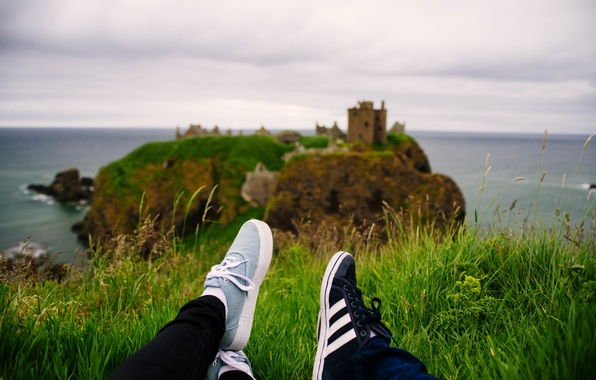 Picture sea, grass, island, sneakers, green, laces