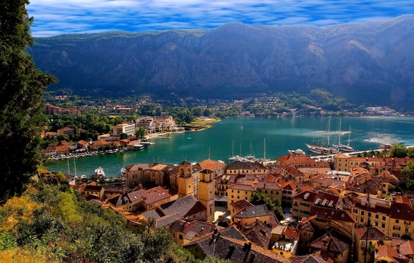 Picture sea, the sky, trees, landscape, mountains, lake, tower, home, roof, kotor, Montenegro, montenegro