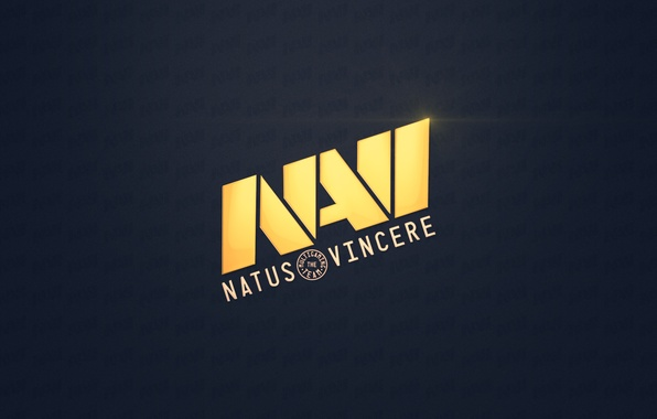 Picture team, na'vi, team, Counter-Strike, NaVi, NATUS VINCERE, 1.6