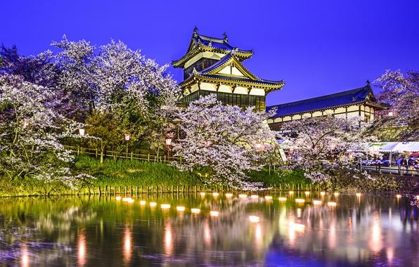 Picture trees, lights, pond, Park, reflection, spring, Japan, Sakura, Japan, pond, Koriyama Castle, Yamatokoriyama, Yamatokoriyama, Kuriyama …