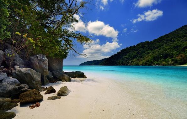 Picture beach, summer, Islands, the ocean, jungle, resort