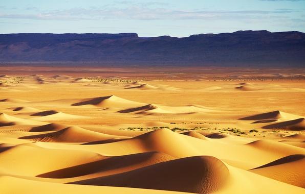 Picture sand, the sky, the dunes, hills, desert, texture, dunes