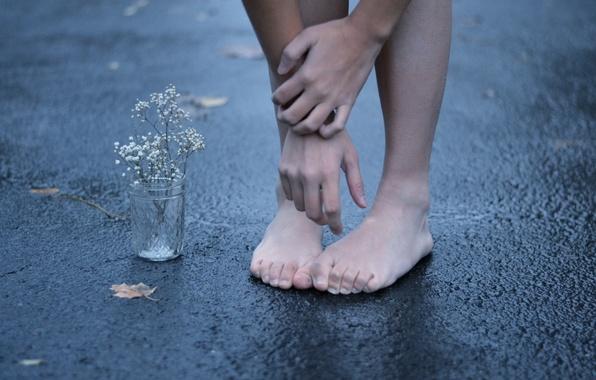 Picture flower, asphalt, street, feet, hands